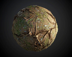 material 3D Tree Roots Terrain Seamless PBR Texture