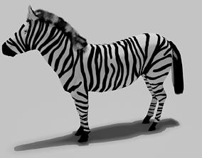 mammal 3D rigged Zebra