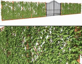 3D model phytowall Ivy fence