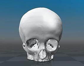 3D model Skull Child - 11 years old