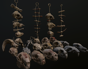 3D model low-poly Bones animals