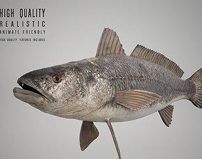 3D Tigertooth Fish