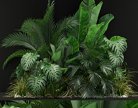 Plants collection 357 3D