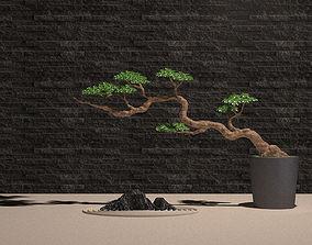 Plant Potted Bonsai Tree Stone Landscape Stone 3D model 1