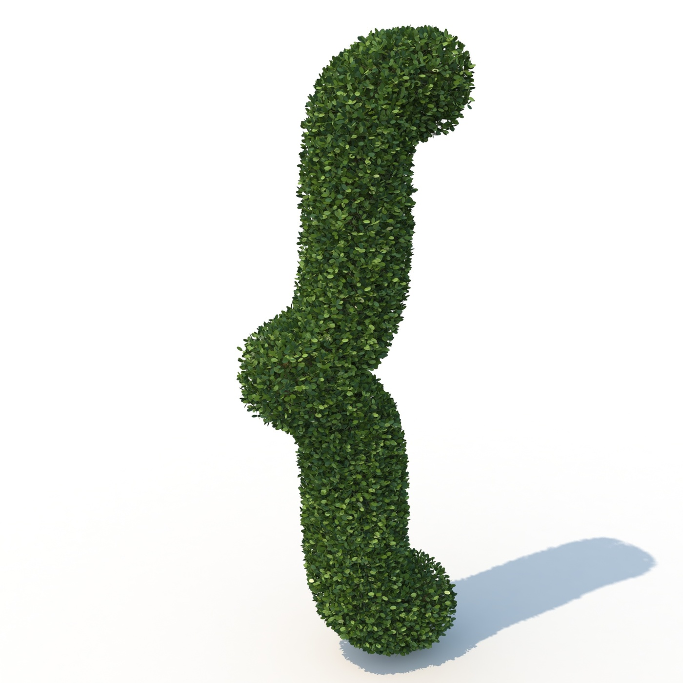 shaped hadges