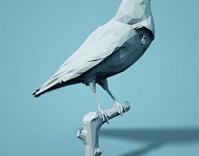 Low Poly Bird Model poly