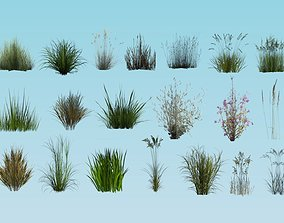 20 lowpoly grass set desert 3D model