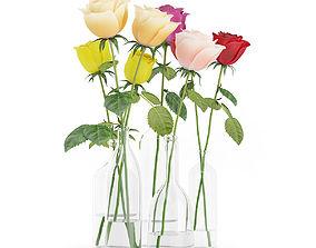 Roses in Glass Vases 3D model