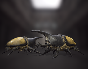 3D model animated Rhinoceros beetle