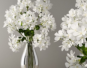 white 3D Geranium in vase