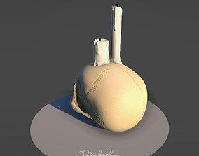 3D model Skull Candle