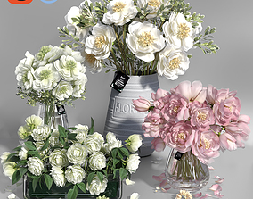 3D model Realistic Natural Fresh Peonies in Different