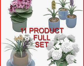 Flower Set 01 11 Product 3D model