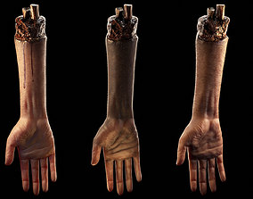 Hand -Arm Severed low poly - Rigged 3D model