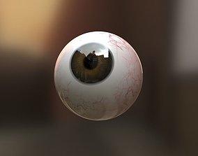 3D asset VR / AR ready Eyeball