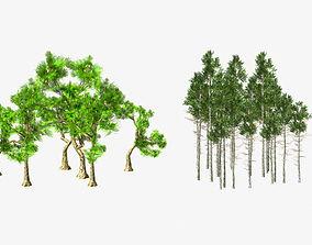 3D model Tree V13