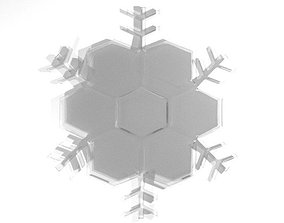 Snowflake - Type 5 3D