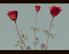 Three Growing Roses 3D model