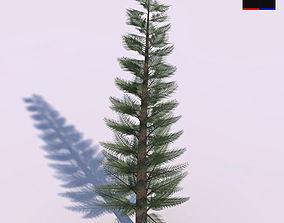 3D model winter Pine Tree