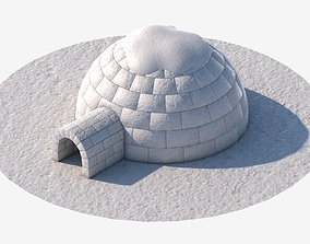 Igloo 3D model realtime