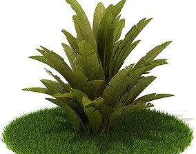 3D Exotic Leafy Green Plant
