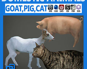 Pack - Domestic Animals 3D model