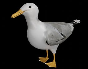 Seagull 3D model rigged