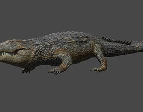 Aligator real measure 3D model