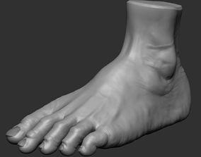 Foot Model 3D