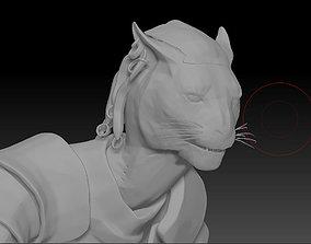 3D Cat SkyRim