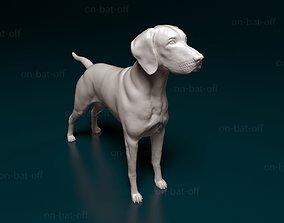 Vizsla dog 3D printable model