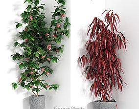 flower 3D Angular bushes