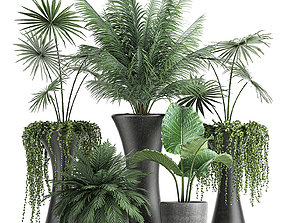 Collection of decorative plants in flowerpots 829 3D