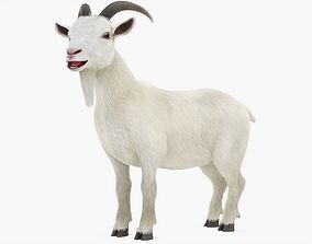 3D model Goat Rigged with Fur