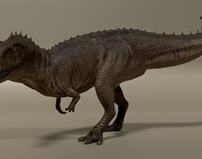 Giganotosaurus 3D asset