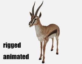 antelope goat caprine sheep lamb deer 3D model