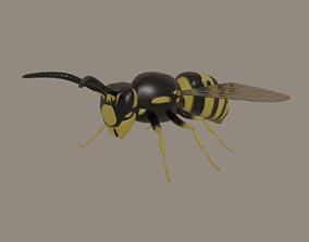 Wasp model rigged