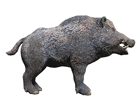 3D model Wild Boar Low-poly