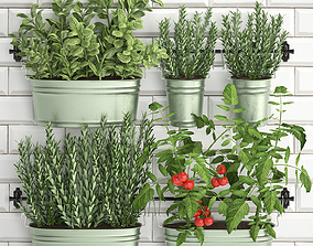 3D Decorative plants for the kitchen on railing 380 3