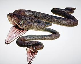 Snake 3D model rigged