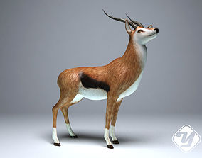 Antelope for 3ds Max animated game-ready