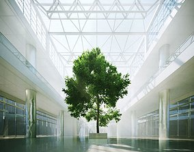 Tree In A Shopping Centre Interior 3D
