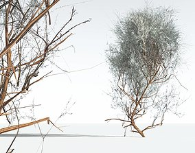 EVERYPlant Big Sagebrush LowPoly 05 --10 Models-- 3D asset