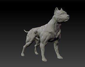 3D printable model American pitbull terrier dog