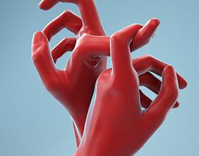 3D Hooked Realistic Hands Model 21