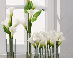 Calla Lily decoration 3D model