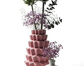 Vases with Echeveria 3D model