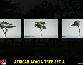 3D model lion AFRICAN ACACIA TREE PACK A - 3 TREES