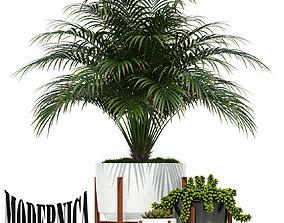 3D Plants collection 68 Modernica pots