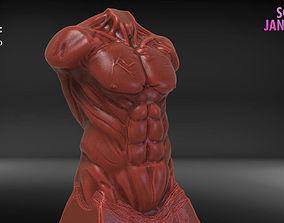 Male Torso Sculpture Timelapse and Model
